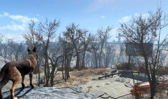 Fallout 4_20151120210052