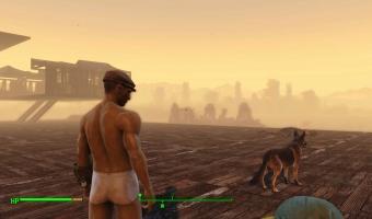 Fallout 4_20151222111440