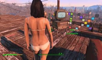 Fallout 4_20151225124311