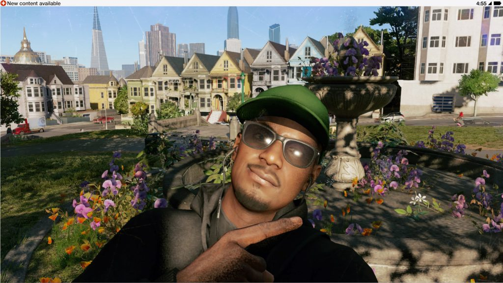 The Painted Ladies!